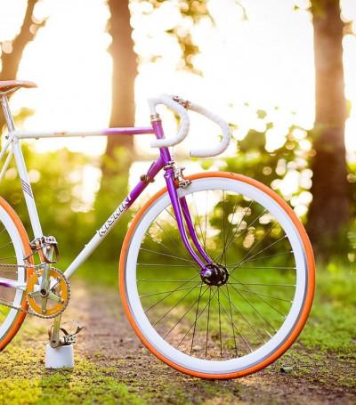 Фитнес- гид от питания до велосипеда